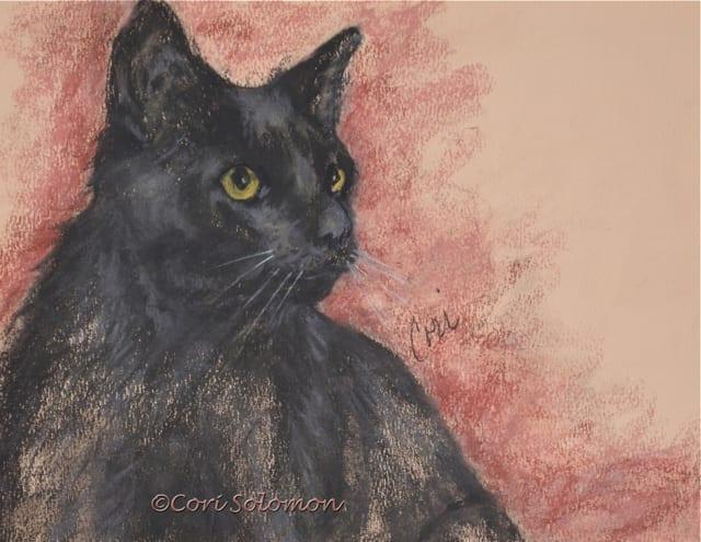 Rosario Black Cat Art By Cori Solomon