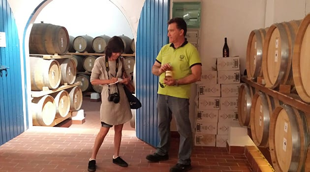 Cori Solomon of the Written Palette surrounded by wine barrels