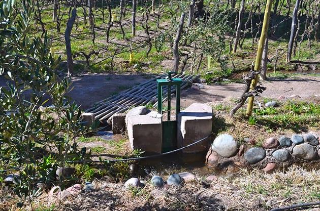 Winery Irrigation System