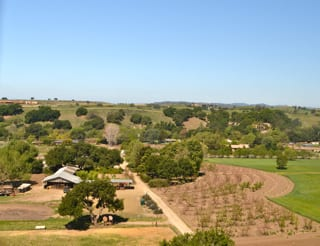 Buttonwood Farm WineryTasting Room and Orchard View