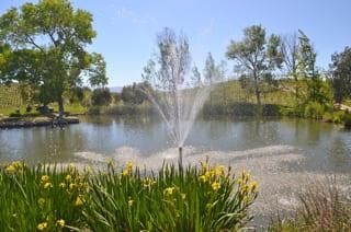 Buttonwood Farm Winery Pond