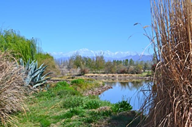 The Views from Bodega Renacer