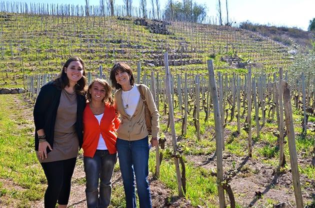 Domaine St. Diego Vineyards