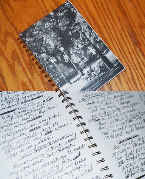Mendoza - The Journal