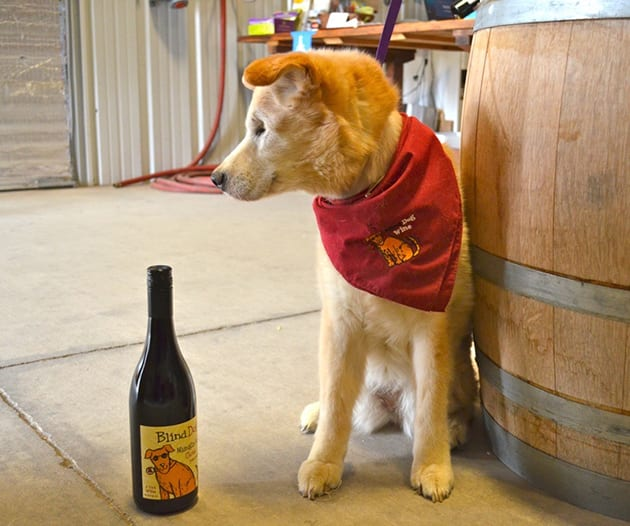 Toby and Blind Dog Wines