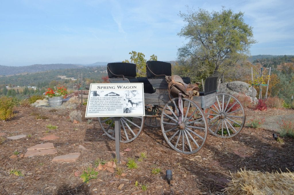 Spring Wagon at Skinner Vineyards