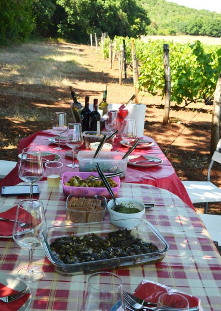 Wine Picnic Table Elinos Vineyards