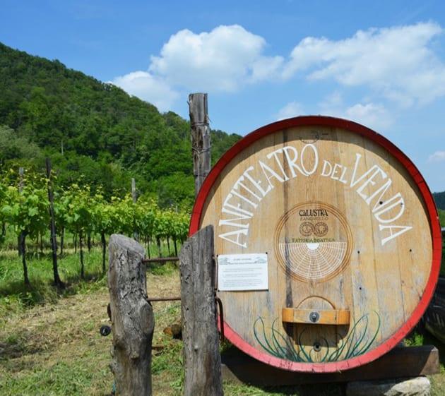 Ca'Lustra Vineyard Entrance