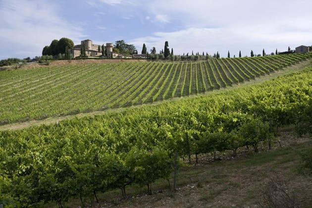 Castello Di Meleto Castle and Vineyards