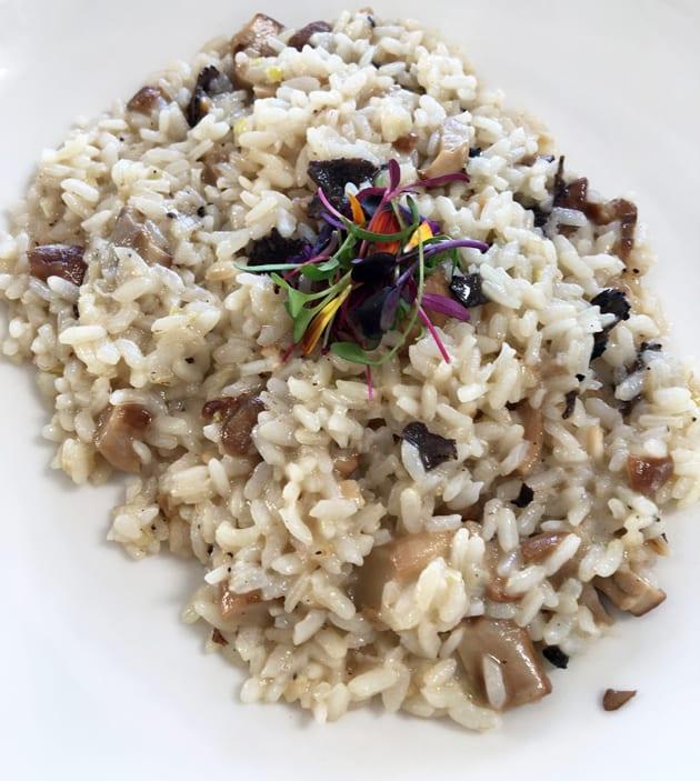 Obica Mozzarella Bar Risotto with Mushrooms and black