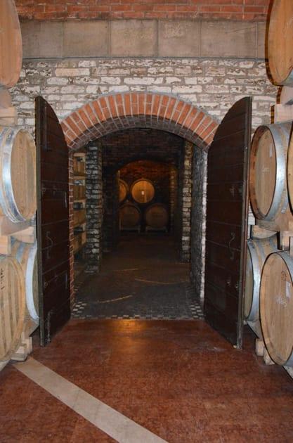 Vignalta Cellar in Colli Euganei