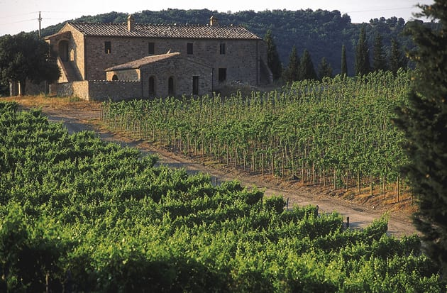 Luce Vineyards with Tuscan Farmhouse