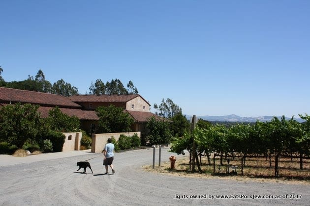 Dog-friendly wineries - Fog Crest Vineyards