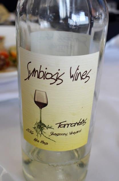 Symbiosis Wines Torontes