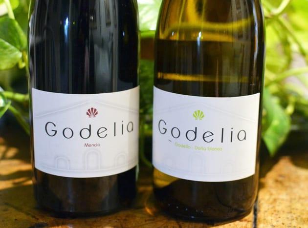 Godelia Wine, Bierzo DO