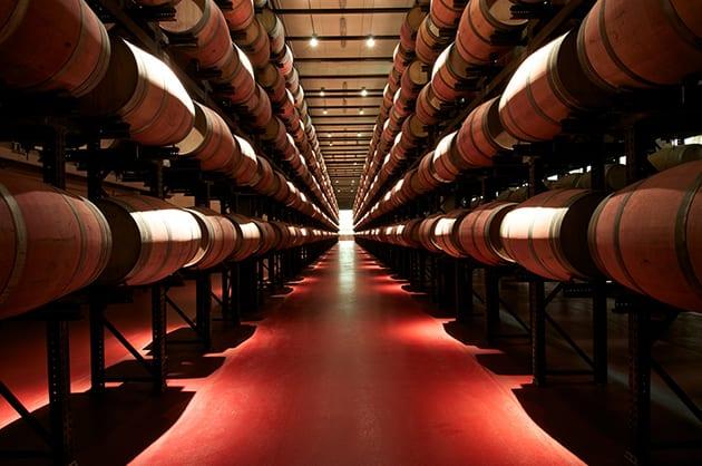 Abadia Retuerta winery-Casks cellar