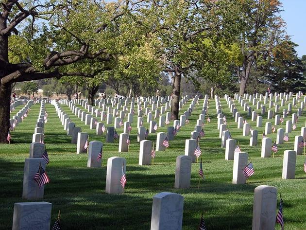 Memorial Weekend Flags