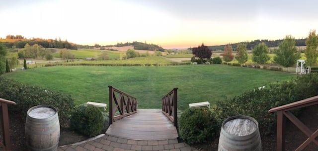 Zenith Vineyards View