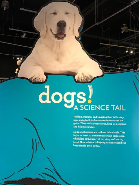 Dogs A Science Tail