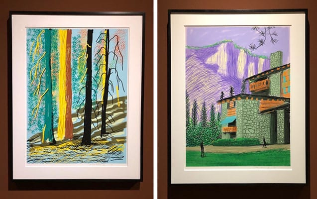 David Hockney Yosemite iPad Drawings