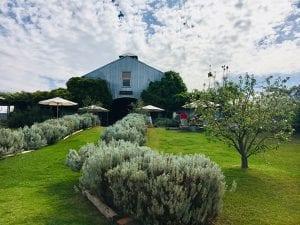 Lowe Wines- Mudgee Wine Region