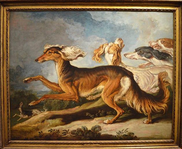 James Ward - Salukis, or Persia Greyhounds