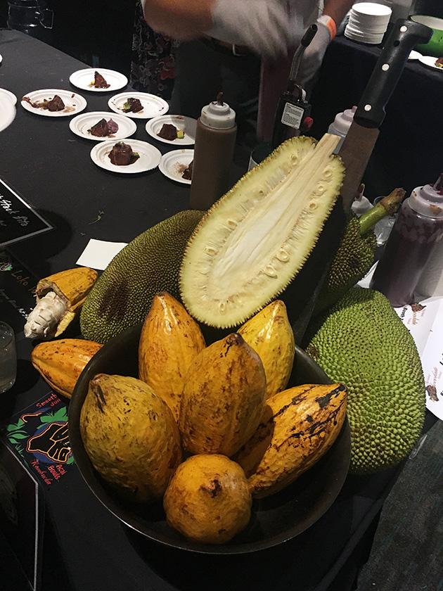 Cacao pod+ © Andrew Harris