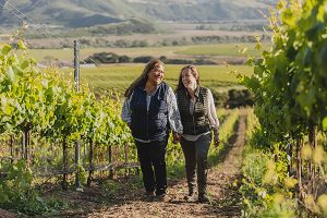 Camins 2 Dreams-In the Vineyards © Craft and Cluster