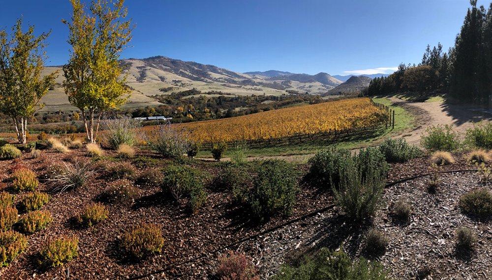 View Irvine & Roberts Ashland Winery