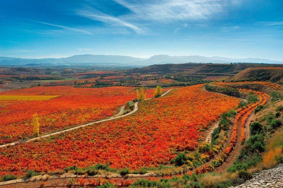 Virtusl Travel Rioja