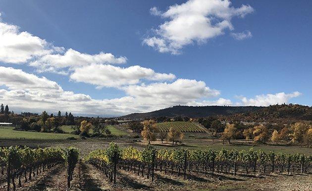 Rogue Valley Winery Kriselle Cellars ranch vineyards