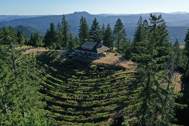 Terragena Off-The-Grid Winery and Vineyards