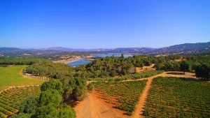 Bella Collina Vineyards - Mendocino County Wine