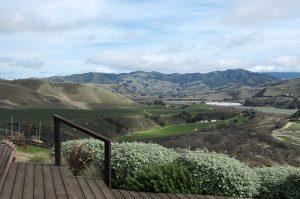 Day Trip to Santa Barbar and Beyond Sea Smoke Vineyard Vista