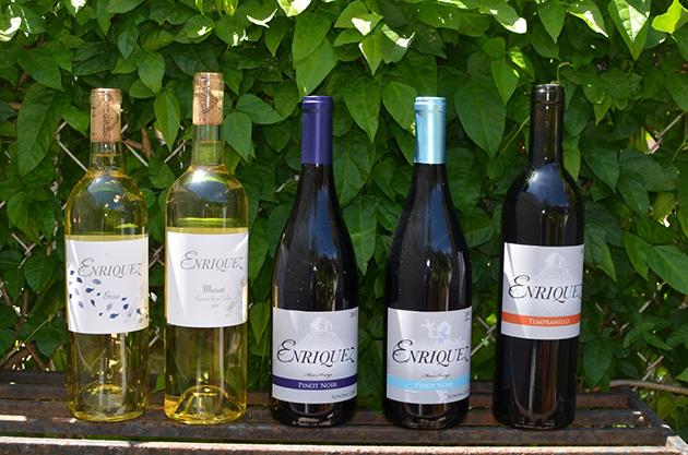 Enriquez Wine Petaluma Gap and Sonoma Coast
