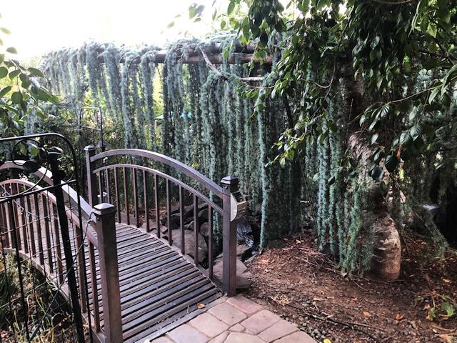Pfeiffer Winery Water Garden